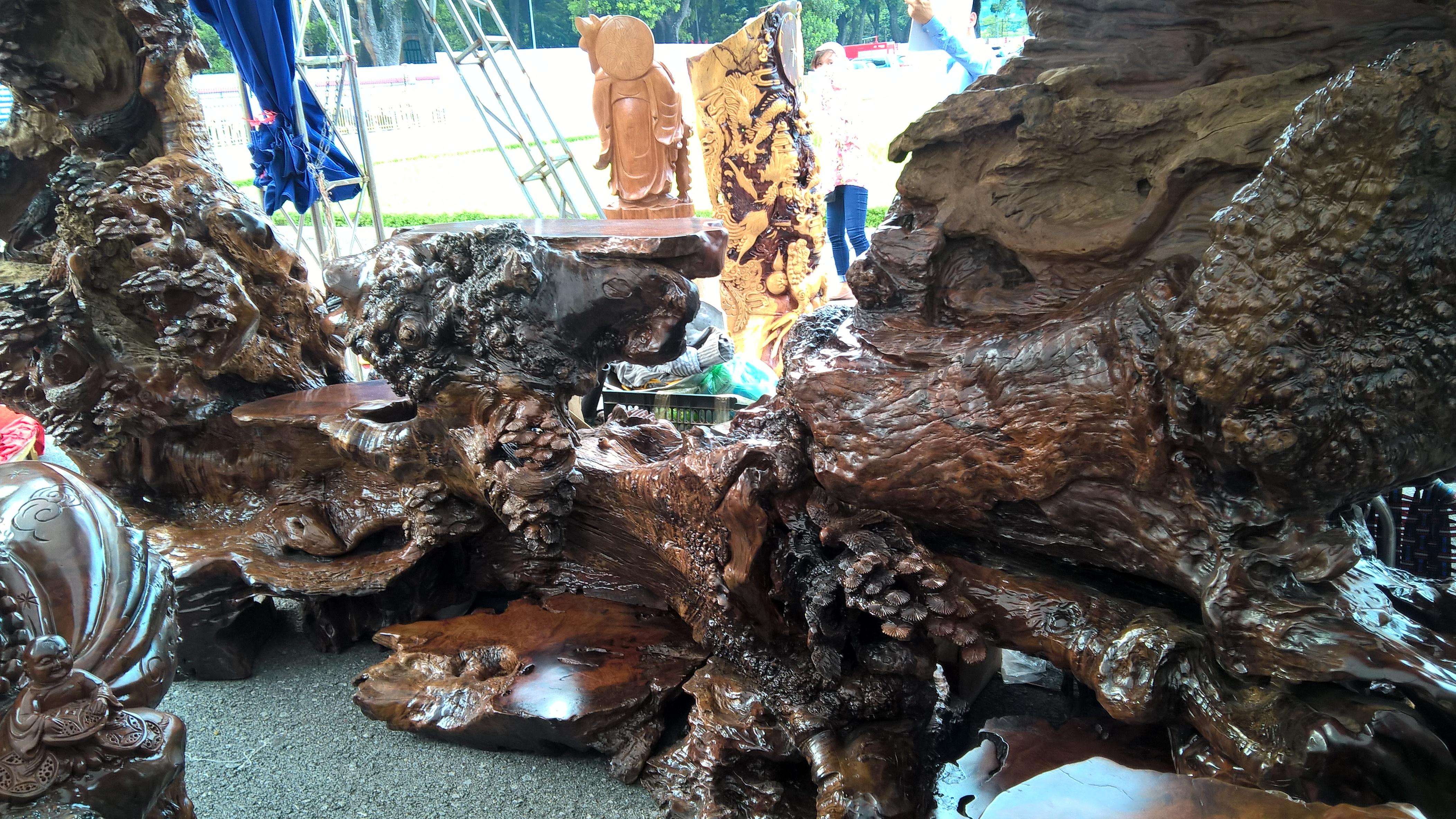 Gốc gỗ quý, có rất nhiều nu xù xì quý hiếm. Chủ nhân cho biết bộ bàn ghế gỗ nu này có một không hai tại Việt Nam