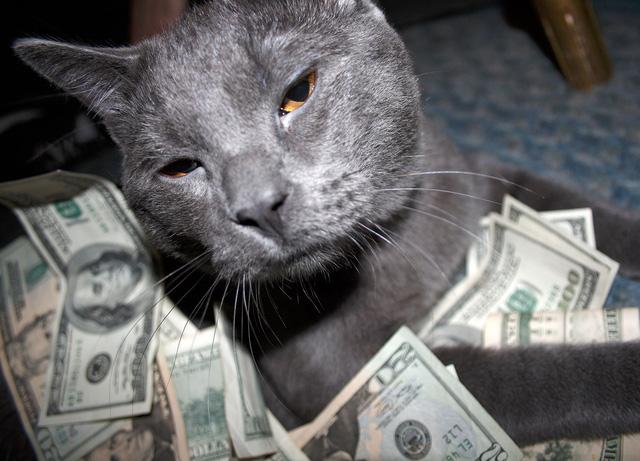 2 con mèo được nhận thừa kế 7 tỷ đồng