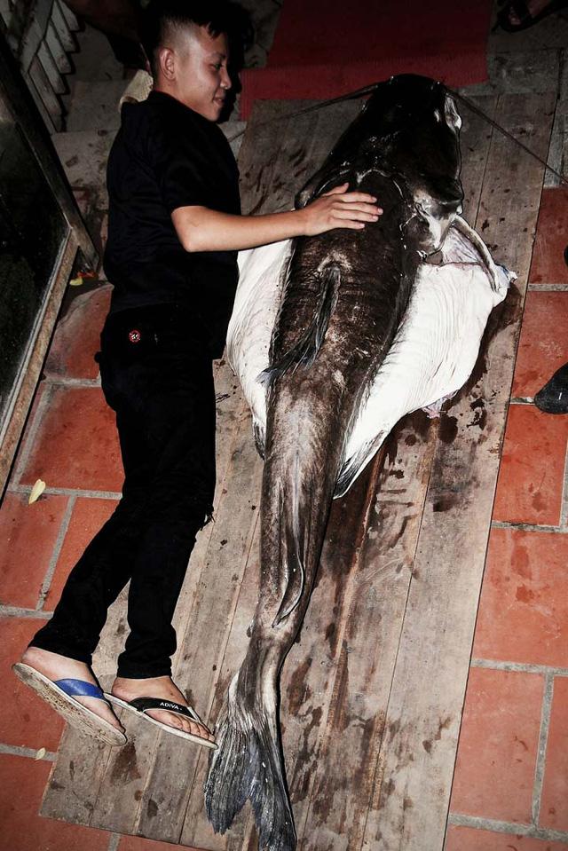 """Cá lăng có trọng lượng """"khủng"""" câu được trên sông Sêrêpốk"""
