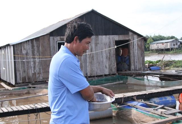 Ông Bon đang cho đàn cá cưng ăn thức ăn