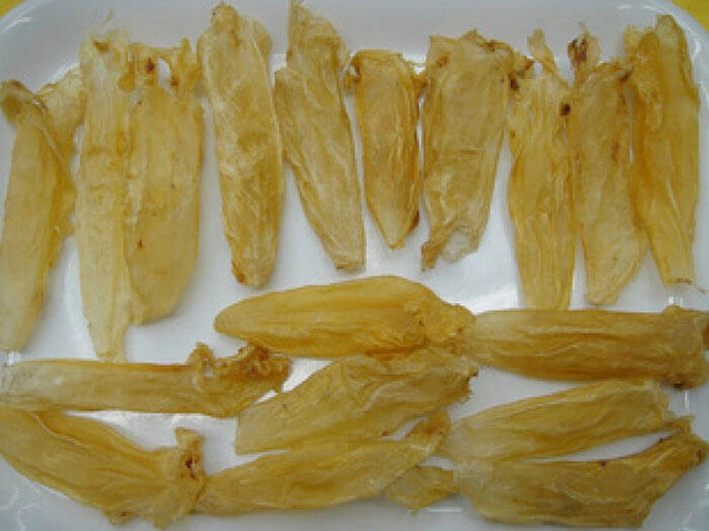 Bong bóng cá chục triệu đồng/kg, có loại 1 tỷ đồng/kg chỉ bán cho nhà giàu Việt