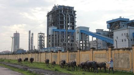 Nhà máy Đạm Ninh Bình cũng nằm trong danh sách dự án có nguy cơ phá sản