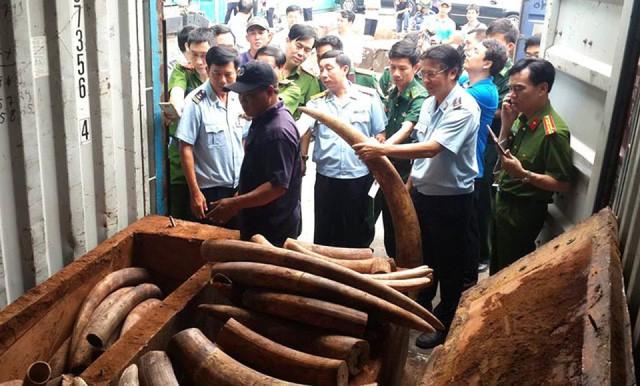 Động vật hoang dã bị trà trộn vào nông sản Việt xuất sang Trung Quốc