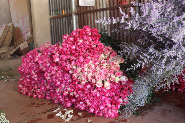 Cận lễ 20/11, hoa tươi Đà Lạt tăng giá nhẹ