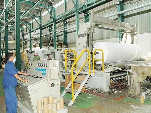 Ngành sản xuất giấy Việt Nam hiện đang vật lộn với khó khăn