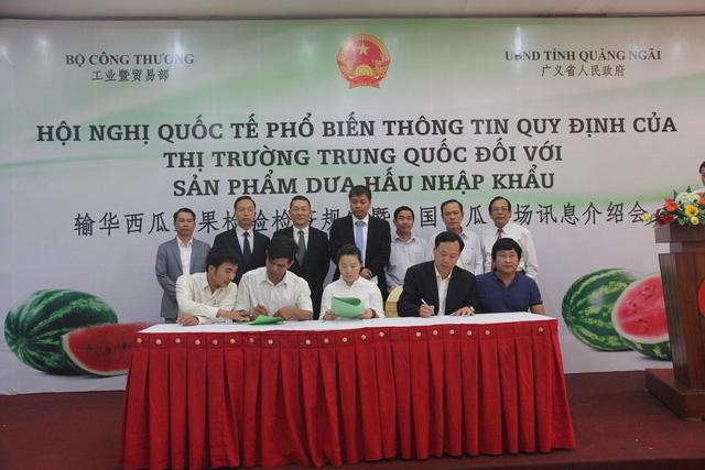 Doanh nghiệp Trung Quốc và doanh nghiệp Việt Nam ký kết hợp đồng nguyên tắc trong việc thu mua dưa hấu