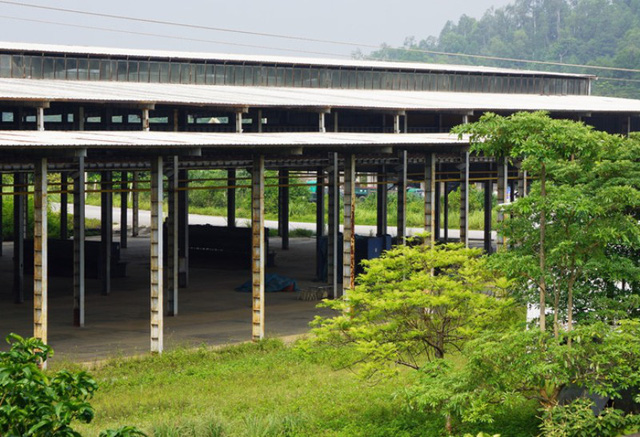 Tỉnh Thanh Hóa đã có quyết định thu hồi một phần diện tích đất của dự án
