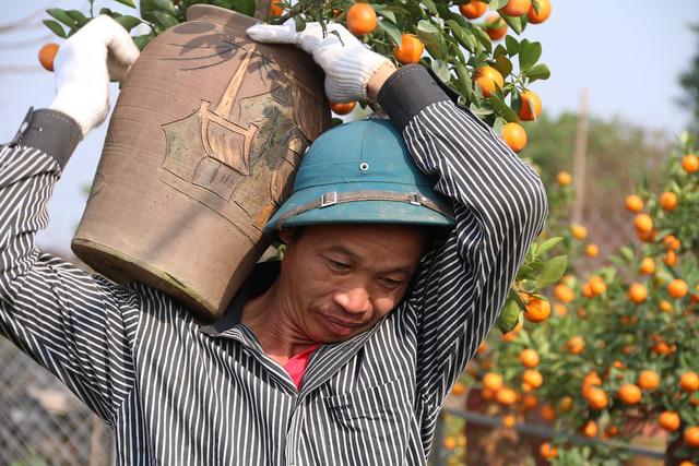 Một chủ vườn quất cho biết, người lao động làm việc lâu dài có thu nhập cũng đủ để nuôi gia đình. Còn những lao động thời vụ thì có thu nhâp cao hơn, khoảng 300 - 500 nghìn đồng một ngày. Có người làm nhiều việc, làm cho nhiều nhà vườn, mỗi ngày có thể kiếm được hàng triệu đồng.