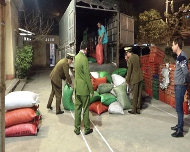 Bắt giữ xe ô tô vận chuyển hơn 2 tấn hạt dẻ nhập lậu Trung Quốc