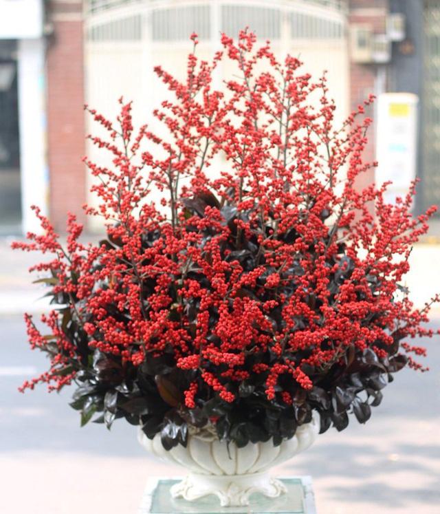 Bình hoa đông đào nhỏ có giá từ 15-30 triệu đồng