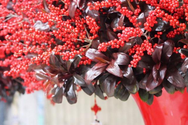 Cặp hình hoa đông đào cao 2m có giá hơn 100 triệu đồng