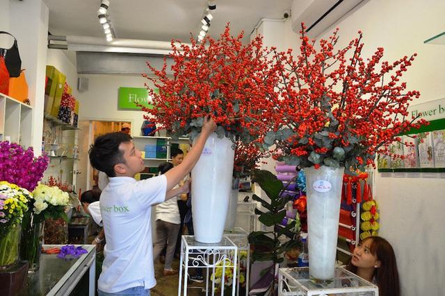 Hoa mẫu đơn nhập khẩu từ Đài Loan được bán với giá 8 triệu đồng/chậu 10 cành.