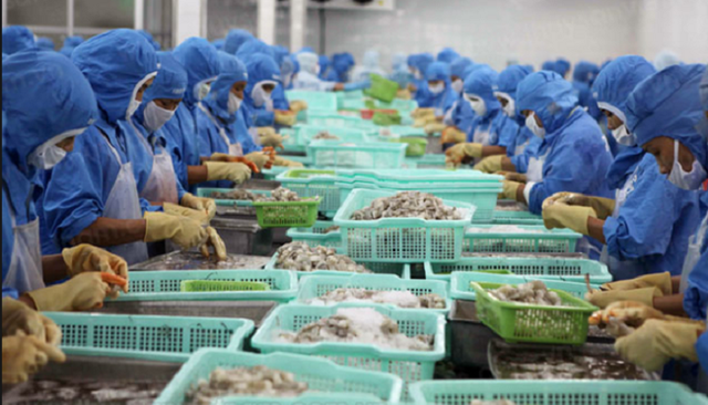 Mặc dù là nước xuất khẩu nhiều hải sản nhưng Việt Nam cũng bắt đầu phải nhập hải sản từ nước ngoài. Ảnh: VTV