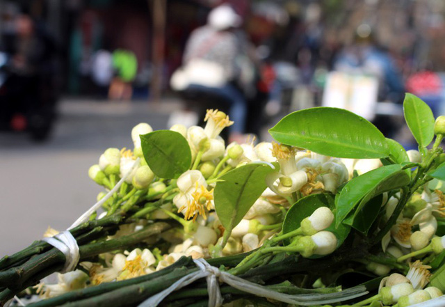 Mỗi bó hoa được xếp khéo léo để không bị rụng cánh