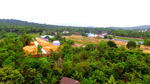 Nhan nhản bảng rao mua bán đất công, đất nền treo từ đường chính đến đường nhánh tại Phú Quốc.