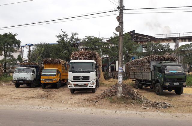 Nhà máy dừng hoạt động khiến các xe tải mía chưa bán được cho nhà máy.