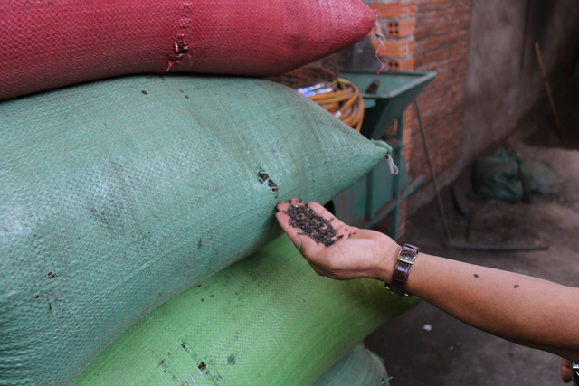 Nhiều mẫu cà phê bị cơ quan chức năng phát hiện kém chất lượng