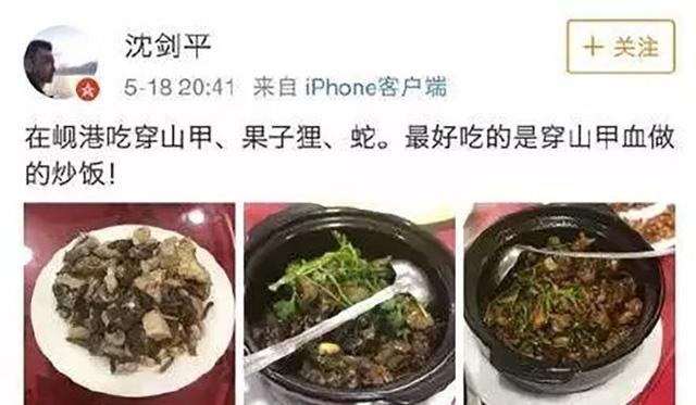 Ăn nhậu động vật quý hiếm tại Việt Nam, một lãnh đạo DN của Trung Quốc bị sa thải