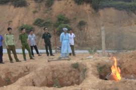 """Lợn Trung Quốc tràn sang Việt Nam, cách quản lý đang """"có vấn đề"""""""