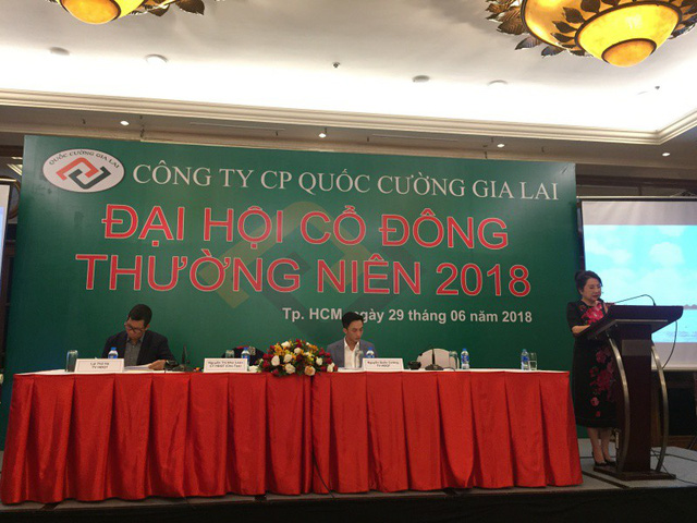 Bà Nguyễn Thị Như Loan, Chủ tịch HĐQT QCG thông tin đến các cổ đông về tình hình hoạt động của công ty.