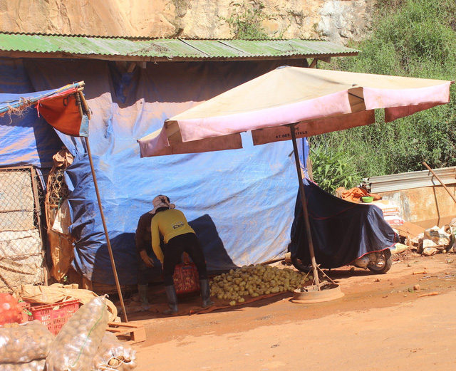 Nhiều tấn nông sản Trung Quốc được nhập về chợ nông sản Đà Lạt.