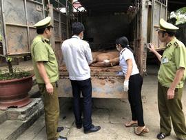 Đáng sợ: Thịt lợn Trung Quốc ồ ạt tuồn về Việt Nam