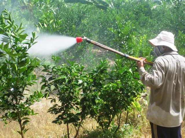 Đa phần các DN sản xuất phân bón giả sử dụng chiệu vỏ ngoại, ruột nội để đánh lừa nông dân. Khi bà con nông dân sử dụng loại phân thuốc giả này vừa làm tăng chi phí vừa ảnh hưởng đến môi trường.