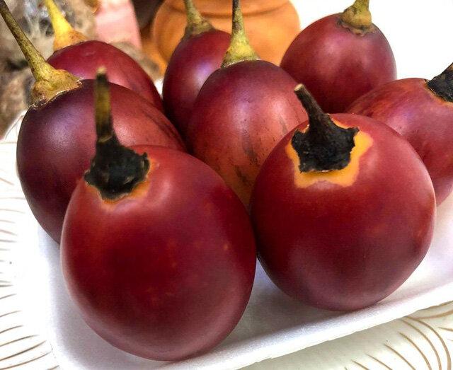 Cà chua lạ 300 ngàn đồng/kg: Chua như chanh leo, thơm mùi dứa