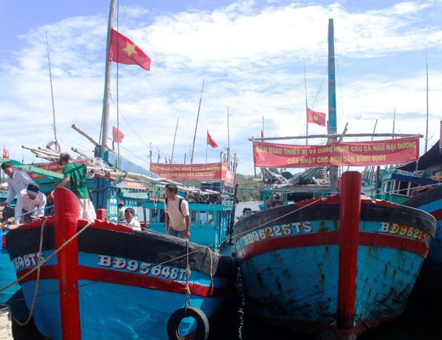 Lộ sai sót rất nghiêm trọng trước đoàn thanh tra EC, Ban quản lý cảng Qui Nhơn bị kiểm điểm