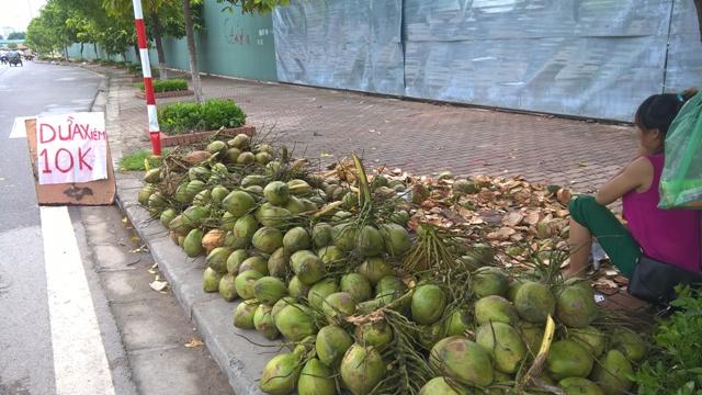 Hàng loạt các mặt hàng hoa quả Việt Nam chọn vỉa hè làm chốn dung thân